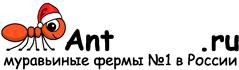 Муравьиные фермы AntFarms.ru - Химки